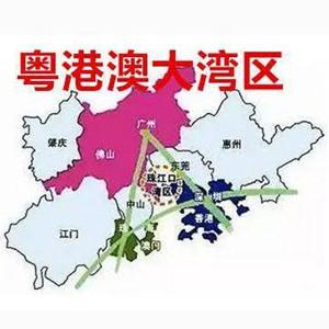 [新華簡訊]粵港澳學者熱議大灣區建設與澳門機會