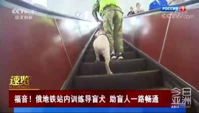 福音!俄地鐵站內訓練導盲犬 助盲人一路暢通