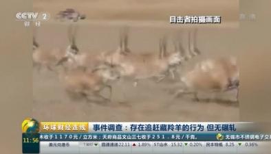 事件調查:存在追趕藏羚羊的行為 但無輾軋