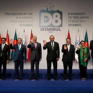 發展中國家八國集團尋求加強合作應對挑戰