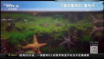 """紀錄片《藍色星球2》部分畫面""""人造"""""""