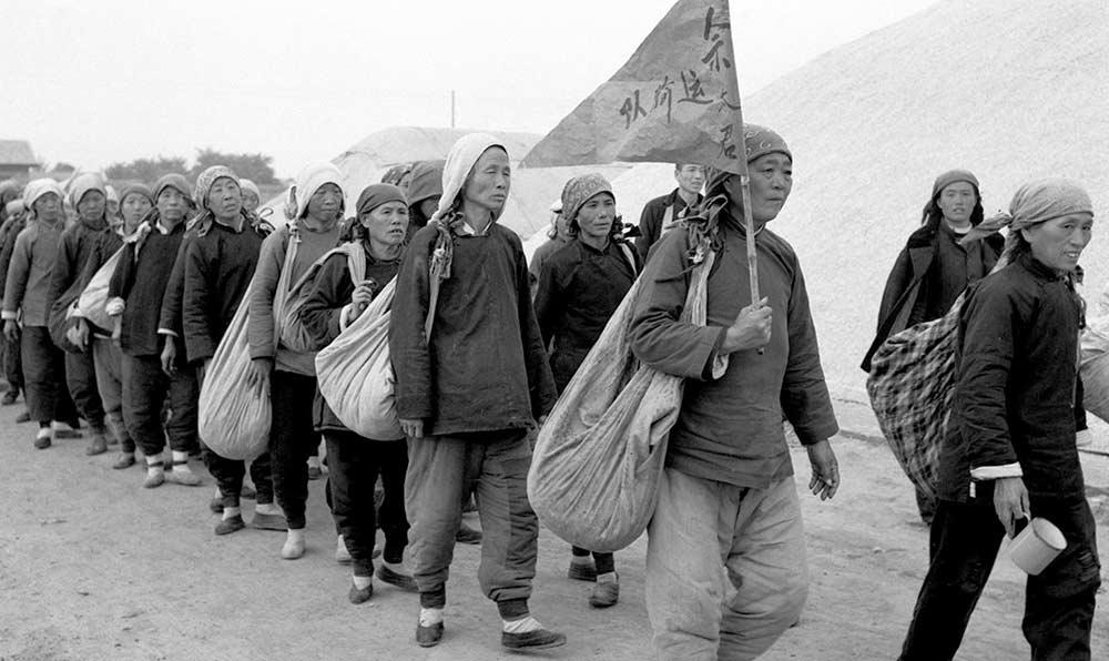 一支由中老年婦女組成的運棉隊——佘太君運輸隊