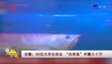 """90後大學生創業 """"共享魚""""年賺幾十萬"""