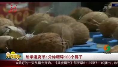 跆拳道高手1分鐘雜碎123個椰子