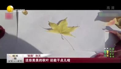 """""""醉美""""秋天:這些美美的秋葉 還能幹點兒啥"""