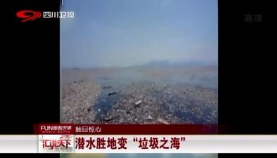 """觸目驚心:潛水勝地變""""垃圾之海"""""""
