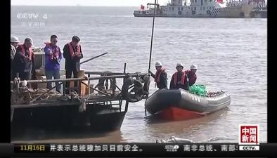 江蘇:擱淺鯨魚最終確認死亡