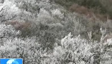安徽:九華山迎來入冬首場霧凇
