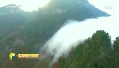 湖北神農架現雲海飛瀑景觀