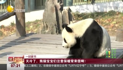 一封家書:天冷了,熊貓寶寶們注意保暖常來信啊!