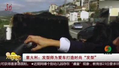 """意大利:發型師為愛車打造時尚""""發型"""""""