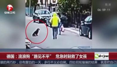 """實拍:流浪狗""""路見不平"""" 救女孩"""