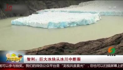 智利:巨大冰塊從冰川中斷裂