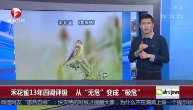 """禾花雀13年四調評級 從""""無危""""變成""""極危"""""""