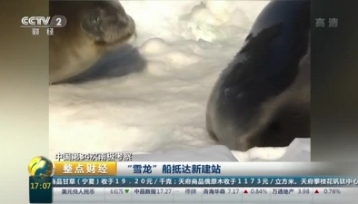 """中國第34次南極考察:""""雪龍""""船抵達新建站"""