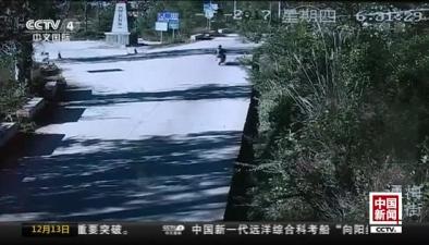 """雲南玉溪:黃牛突然發瘋狂奔 民警""""十裏追牛"""""""