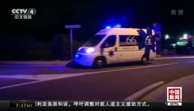 法國南部一列火車與校車相撞致4人死亡