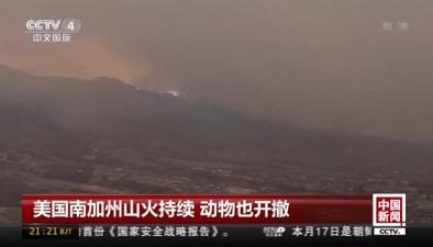 美國南加州山火持續 動物也開撤