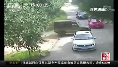 北京八達嶺野生動物園老虎傷人案:索賠218萬 案件未當庭判決