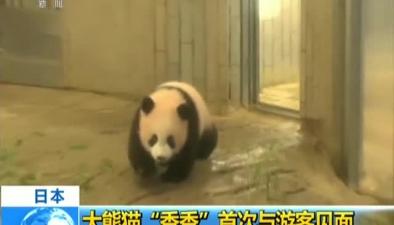 """日本:大熊貓""""香香""""首次與遊客見面"""