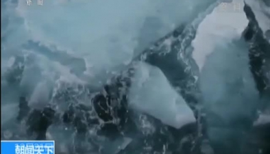 """中國第34次南極科考:""""雪龍""""號衝出浮冰區前往中山站"""