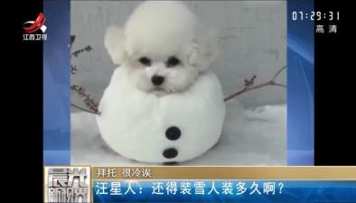 拜托 很冷誒:汪星人還得裝雪人裝多久啊?