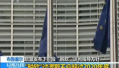"""歐盟發布下階段""""脫歐""""談判指導方針""""脫歐""""過渡期不應超過2020年底"""