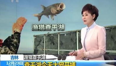 漁獵查幹湖查幹湖今天大網開捕