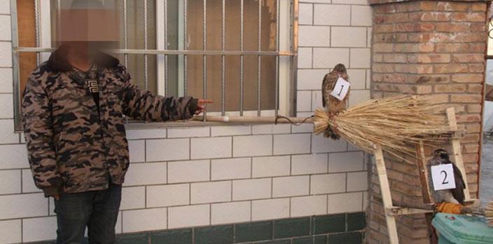 """直播動物""""表演"""":三人販賣國家重點保護動物被抓獲"""