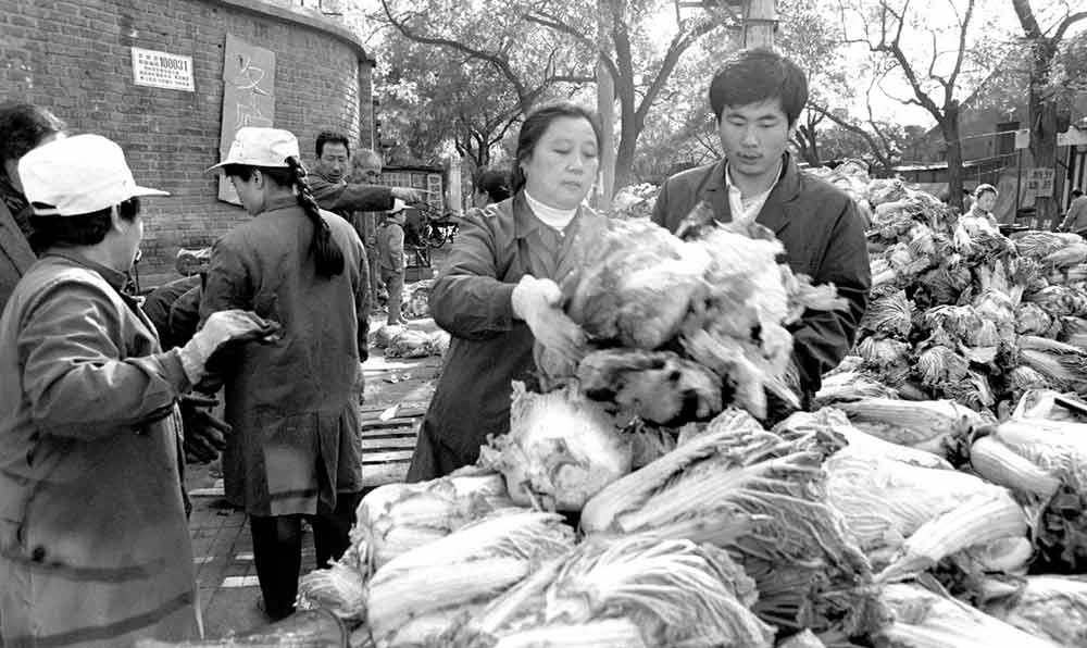 西城區新文化街的居民們在菜站購買冬貯大白菜。