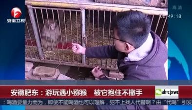 安徽肥東:遊玩遇小獼猴 被它抱住不撒手