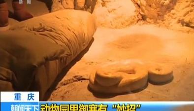 """重慶:動物園裏禦寒有""""妙招"""""""