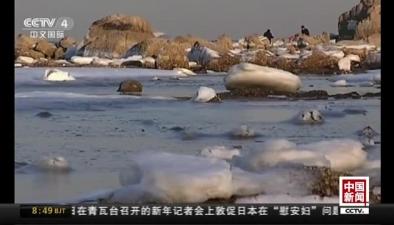 河北秦皇島:北戴河再現冰海美景