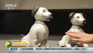 """索尼新一代機器狗""""愛寶""""發售 萌寵智能惹人愛"""