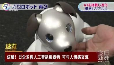 炫酷!日企發售人工智能機器狗 可與人情感交流
