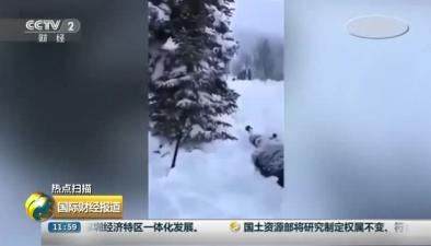 俄雪崩致5名遊客被埋 2人遇難
