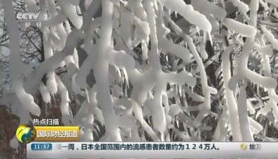 """美國中西部再遇嚴寒大雪 湖畔沙灘變身""""冰雕公園"""""""