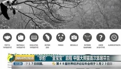 """""""華豹"""" """"金寶寶""""啟程 中國大熊貓首次旅居芬蘭"""