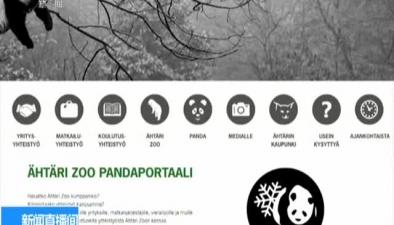 """芬蘭:大熊貓""""華豹"""" """"金寶寶""""將落戶芬蘭"""
