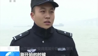 安徽:野生江豚現身長江銅陵段