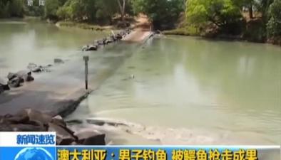 澳大利亞:男子釣魚 被鱷魚搶走成果
