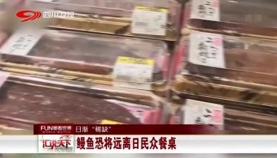 """日漸""""稀缺"""":鰻魚恐將遠離日民眾餐桌"""
