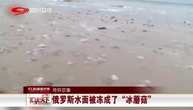 """奇異景象:俄羅斯水面被凍成了""""冰蘑菇"""""""