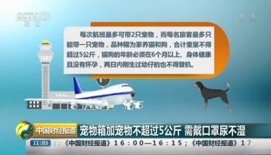 海航推出客艙運輸寵物服務