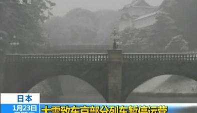 日本:大雪致東京部分列車暫停運營