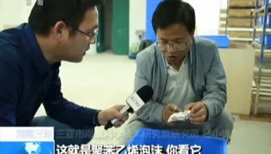 海南三亞:神奇蟲子吃塑料 廣泛應用待研究