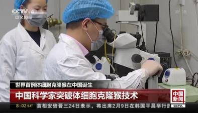 世界首例體細胞克隆猴在中國誕生:中國科學家突破體細胞克隆猴技術