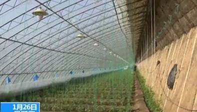 三部門聯合發布耕地保護考核辦法:高標準農田建設將是重要考核內容