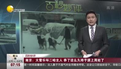 南京:大雪樂壞二哈主人 養了這麼久終于派上用處了