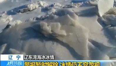 遼寧:遼東灣海冰冰情警報暫時解除 冰情仍不容忽視